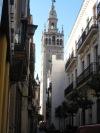Spain 10 084